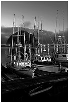 Lighted fishing boats and Morro Rock. Morro Bay, USA ( black and white)