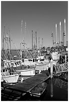 Fishing boats and power plant. Morro Bay, USA ( black and white)