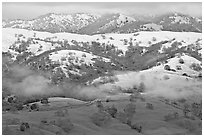 Snow on top of green hills of Mount Hamilton Range. San Jose, California, USA (black and white)