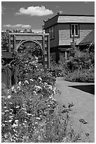 Flowers in backyard. Winchester Mystery House, San Jose, California, USA (black and white)