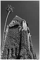 Ivy-covered Tower Hall, San Jose State University. San Jose, California, USA ( black and white)