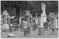 Variety of headstones, Colma. California, USA ( black and white)