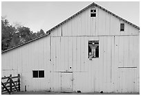 Barn with figures in window and cats, Happy Hollow Farm, Rancho San Antonio Park, Los Altos. California, USA ( black and white)