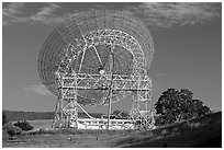 Astronomical Antenna known as The Dish. Stanford University, California, USA (black and white)