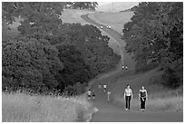 Women walking on trail, Stanford academic preserve. Stanford University, California, USA (black and white)
