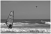 Windsurfer and kitesurfer, Waddell Creek Beach. California, USA (black and white)