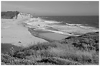 Beach with waves and kites, Scott Creek Beach. California, USA (black and white)