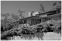 Facade and trees, Frank Lloyd Wright Honeycomb House. Stanford University, California, USA ( black and white)