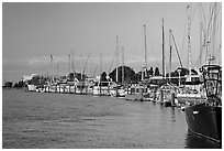 Yachts near Bair Islands, sunset. Redwood City,  California, USA (black and white)