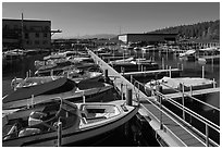 Sunnyside marina, West Shore, Lake Tahoe , California. USA (black and white)