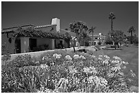 Mediterranean-style houses, flowers, and palm trees. Santa Barbara, California, USA (black and white)