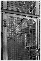 Grids and cells, Alcatraz Prison interior. San Francisco, California, USA (black and white)
