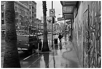 Rainy street. San Francisco, California, USA (black and white)