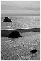Shimmering waters, Mouth of the Russian River, Jenner. Sonoma Coast, California, USA (black and white)