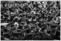 Graduating students in academic gowns and caps. Stanford University, California, USA ( black and white)