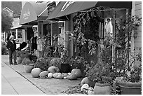 Sidewalk in the fall. Half Moon Bay, California, USA (black and white)