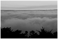 Sea of clouds at sunset. Oakland, California, USA ( black and white)