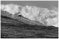Surfer in Maverick wave. Half Moon Bay, California, USA (black and white)