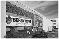 Wall with mural celebrating berry growing. Watsonville, California, USA ( black and white)