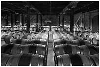 Wine cellar, Hess Collection winery. Napa Valley, California, USA (black and white)