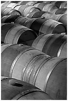 Oak barrels, Hess Collection winery. Napa Valley, California, USA (black and white)