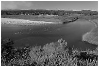 Marsh at the mouth of Carmel River. Carmel-by-the-Sea, California, USA ( black and white)