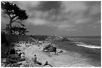 Pictures of Pacific Grove