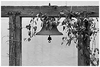 Historic bell. Monterey, California, USA (black and white)