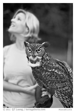Owl and handler, Alum Rock Park. San Jose, California, USA (black and white)