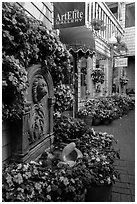 Art gallery decorated with flowers, Sausalito. California, USA ( black and white)