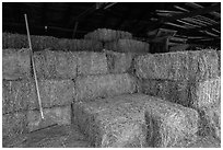 Hay in barn, Ardenwood farm, Fremont. California, USA ( black and white)