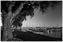 Marina at sunset, Vallejo. San Pablo Bay, California, USA (black and white)