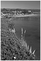 Pier and village. Capitola, California, USA (black and white)