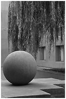 Sphere and willow in courtyard, Schwab Residential Center. Stanford University, California, USA (black and white)
