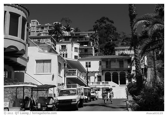 Street with hillside houses looming above, Avalon, Catalina. California, USA (black and white)