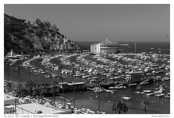 Beach, Pier, harbor, and casino from above, Avalon, Catalina. California, USA