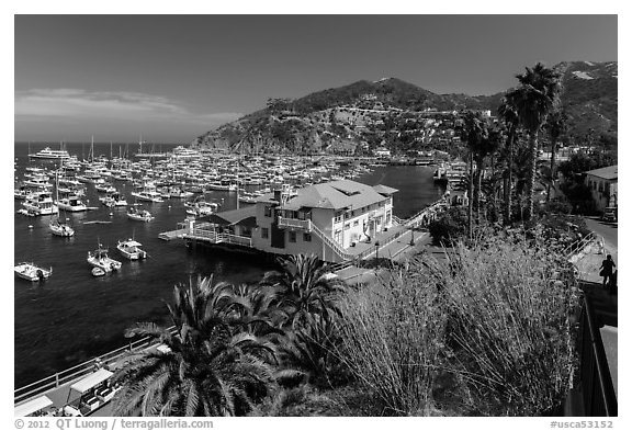 Harbor and waterfront, Avalon Bay, Catalina Island. California, USA (black and white)