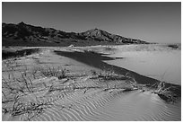 On Kelso Sand Dunes. Mojave National Preserve, California, USA (black and white)