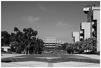Campus perspective with Fallen Star and Geisel Library, University of California. La Jolla, San Diego, California, USA ( black and white)