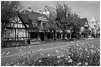 Street and flowers. Solvang, California, USA ( black and white)