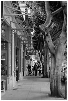 Shopping street. California, USA ( black and white)