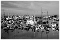 Marina, Moss Landing. California, USA ( black and white)
