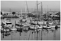 Moss Landing Marina. California, USA ( black and white)