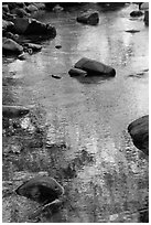Boulders and green foliage reflection in river. California, USA ( black and white)