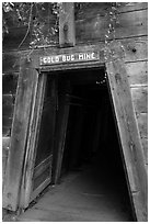Entrance of historic Gold Bug Mine, Placerville. California, USA ( black and white)