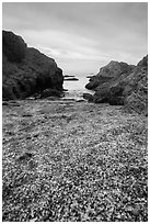 Rocky beach cove filled with seaglass. Fort Bragg, California, USA ( black and white)