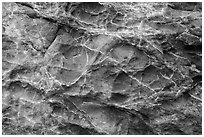 Honeycombed rock formations. Fort Bragg, California, USA ( black and white)