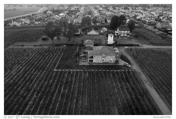 Aerial view of winery at the edge of suburban housing. Livermore, California, USA (black and white)