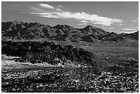 Lava field and mountains. Mojave Trails National Monument, California, USA ( black and white)