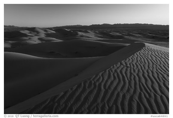Ripples on dunes, Cadiz Sand Dunes. Mojave Trails National Monument, California, USA (black and white)